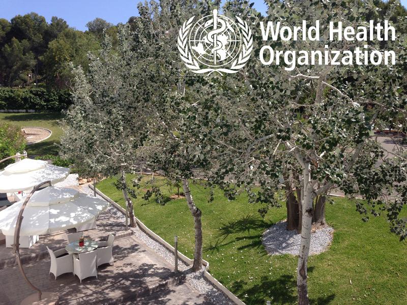 Costa Blanca: Healthiest Region In Europe